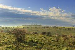 primavera Alta Murgia National Park: colline protette in foschia di mattina L'Puglia-ITALIA Fotografie Stock Libere da Diritti