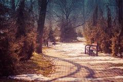 Primavera in anticipo nel parco Il sole di marzo è brillante, il resti della bugia della neve sui percorsi Due banchi del metallo Immagini Stock