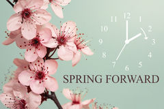 Primavera in avanti Immagine Stock Libera da Diritti