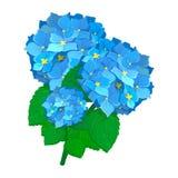 Primavera botánica del vector de la flor del ramo del diseño de la decoración de la naturaleza del diseño de la flor del dibujo d Fotos de archivo libres de regalías