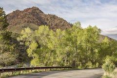 Primavera in canyon della montagna Immagine Stock