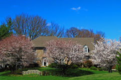 Primavera casera Foto de archivo libre de regalías