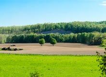 Primavera che pianta in Bruce County immagini stock