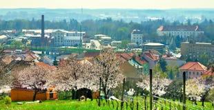 Primavera che viene alla città Immagine Stock Libera da Diritti