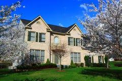 Primavera Cherry Tree de la casa Fotos de archivo libres de regalías