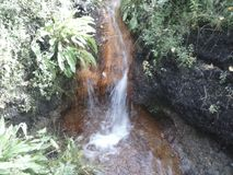 Primavera de agua Imagenes de archivo