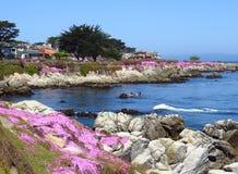 Primavera de la Costa del Pacífico Foto de archivo libre de regalías