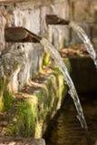 Primavera de la fuente de agua de la fuente en el bosque Foto de archivo libre de regalías