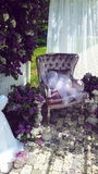 Primavera de la lila Fotografía de archivo