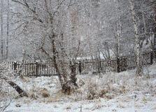 Primavera de la paramera La nieve cayó Imágenes de archivo libres de regalías