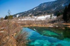 Primavera de Sava, Zelenci, Eslovenia Imagen de archivo libre de regalías