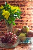 Primavera/decorazione di pasqua Immagine Stock