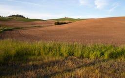 Primavera del campo arata azienda agricola che pianta Palouse Fotografia Stock Libera da Diritti