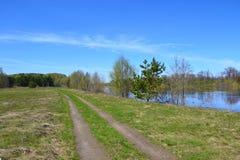 Primavera del fiume Immagini Stock