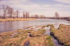 Primavera del fiume dell'arco Immagine Stock Libera da Diritti