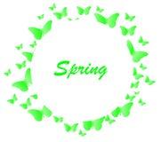 Primavera del fondo de la mariposa Fotos de archivo libres de regalías