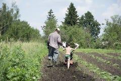 In primavera del padre e del figlio che arano la terra nel giardino Fotografia Stock