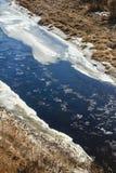 Primavera del río Imagenes de archivo