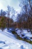 Primavera del río Imagen de archivo