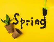 Primavera del texto enmarcada de fuentes del jardín y de plantas verdes Pote, pala, flor en un fondo coloreado Disposición plana imágenes de archivo libres de regalías