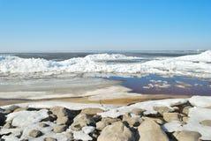 Primavera della costa di golfo fotografia stock libera da diritti