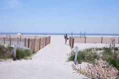 Primavera della spiaggia Immagini Stock