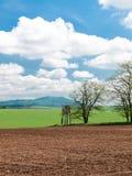 Primavera della terra coltivata Immagine Stock Libera da Diritti