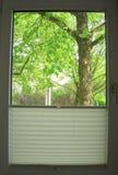 Primavera detrás de la ventana Fotos de archivo