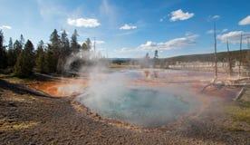Primavera di Firehole dell'azionamento del lago Firehole nel parco nazionale di Yellowstone nel Wyoming U.S.A. Fotografia Stock