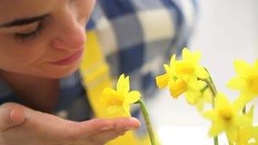 Primavera, donna nei tocchi del giardino e narciso degli odori stock footage