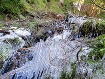 Primavera e hielo Fotografía de archivo