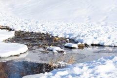 Primavera e ruscello balbettante nella neve, un giorno soleggiato luminoso immagini stock