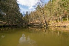 Primavera Eisenach Fotografie Stock Libere da Diritti