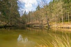 Primavera Eisenach Immagine Stock Libera da Diritti