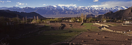 Primavera em Ladakh - panorama Foto de Stock Royalty Free