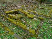 Primavera en cementerio judío abandonado y registrado Imagenes de archivo