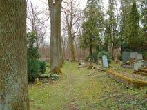 Primavera en cementerio judío abandonado y registrado Foto de archivo libre de regalías