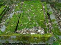 Primavera en cementerio judío abandonado y registrado Imagen de archivo libre de regalías