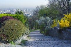 Primavera en ciudad Fotografía de archivo libre de regalías