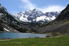 Primavera en el lago marrón Imagen de archivo