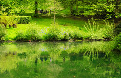 Primavera en el parque de Kelvingrove en Glasgow Fotografía de archivo