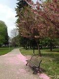 Primavera en Italia Fotos de archivo