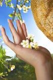 Primavera en la palma de su mano. Imagen de archivo