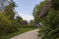 Primavera en la República Checa Foto de archivo libre de regalías