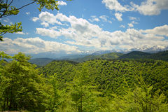 Primavera en las montañas Foto de archivo