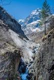 Primavera en las montañas Fotos de archivo libres de regalías