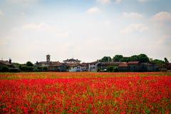 Primavera en los campos de Italia Foto de archivo libre de regalías