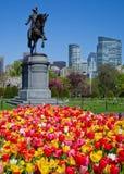 Primavera en los jardines públicos de Boston fotos de archivo
