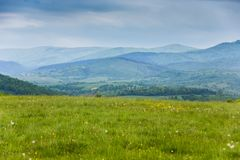 Primavera en montañas Campo de las flores del resorte Imagen de archivo libre de regalías