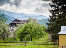 Primavera en montañas Floración del jardín y ountains azules Foto de archivo
